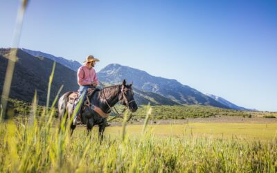 Nyd naturen med en weekend på hesteryg