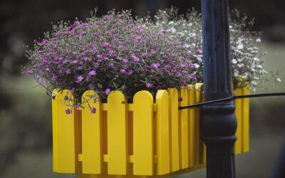 Højbede og plantekasser giver dig det sidste i din indretning af din have